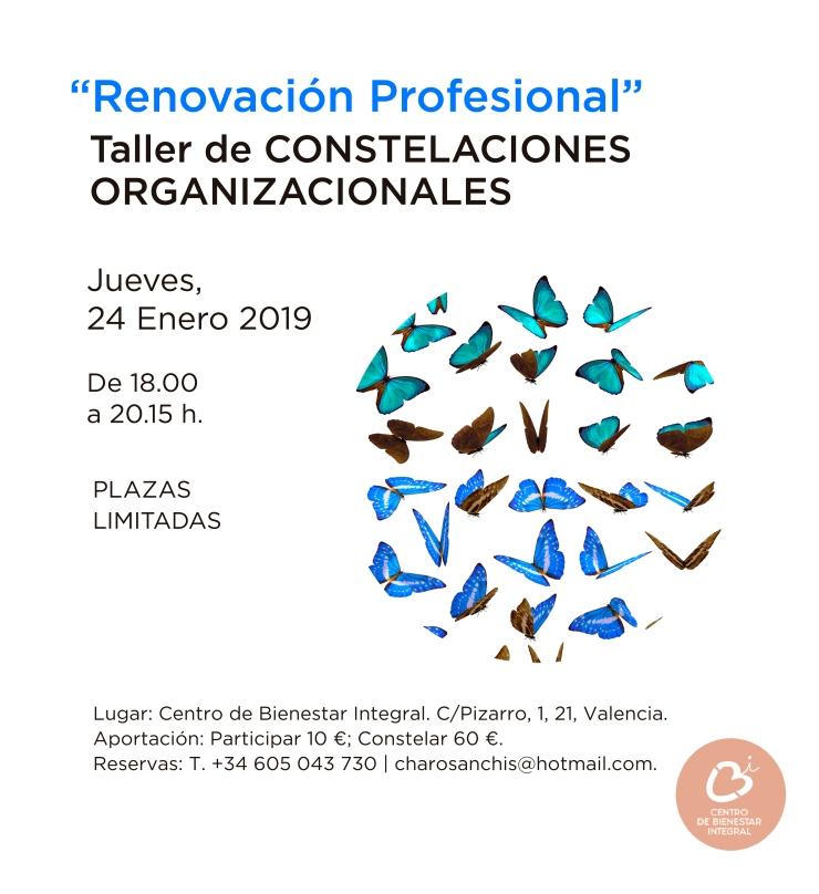 Taller_Constelaciones_Organizacionales24Enero2019-01